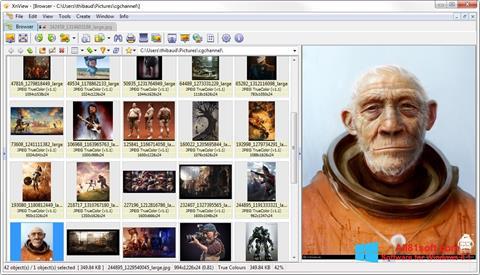 Skjermbilde XnView Windows 8.1