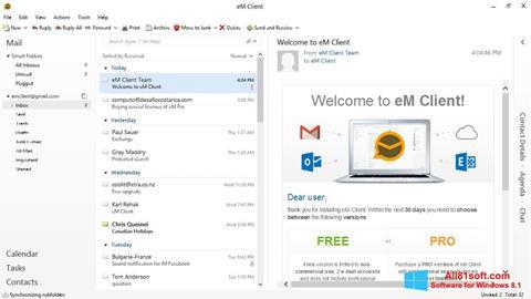 Skjermbilde eM Client Windows 8.1