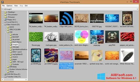 Skjermbilde IrfanView Windows 8.1