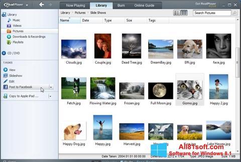Skjermbilde RealPlayer Windows 8.1